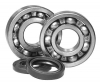 All Balls Crankshaft Bearing and Seal Kit Honda TRX 90