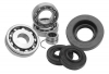 All Balls Rear Axle Bearing Kit Yamaha YFZ 450