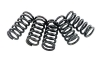 EBC Clutch Spring Set Yamaha YFZ 450R and 450X