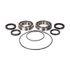 Bearing Connections Rear Axle Bearing Kit Suzuki LT-R 450