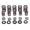 Hot Cams Camshaft Spring Kit Polaris Ranger RZR 800 2007-2011