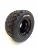 GoldSpeed Flat Track & TT Tire